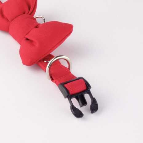 Dog_collar_-_red_big_bow_-_3_tqcjn7