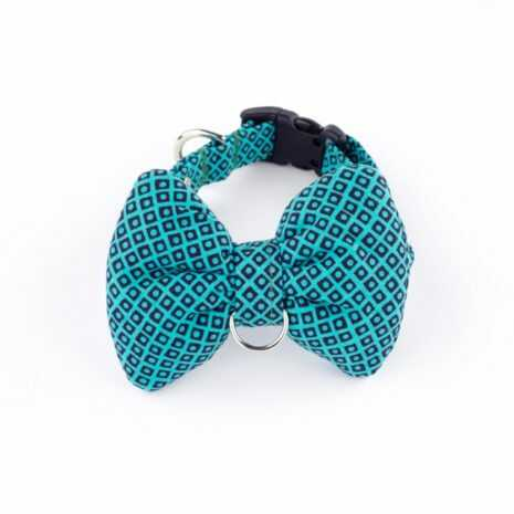 Dog_collar_-_turquoise_detachable_big_bow_-_1_bi7zpb