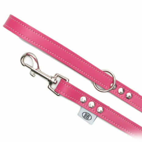 Hot Pink Leash 3/4""