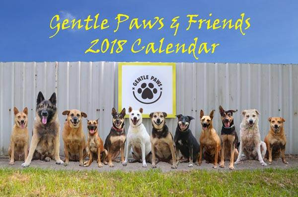 """Gentle Paws & Friends""– Gentle Paws Dog Shelter 2018 Calendar"