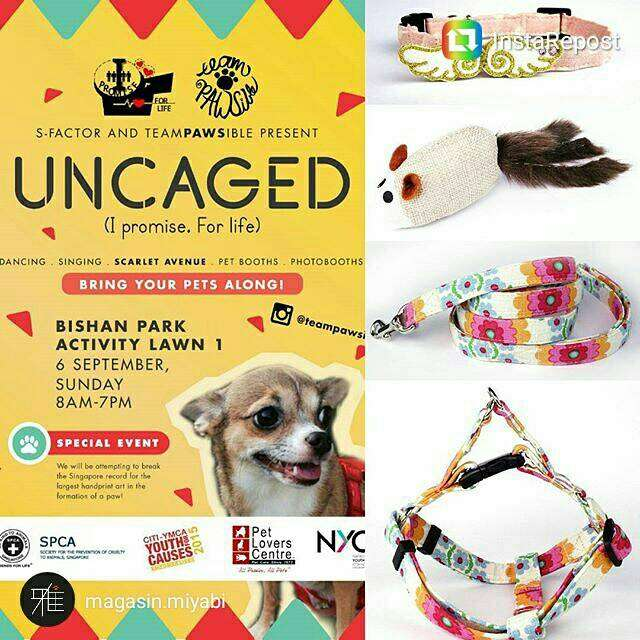 UNCAGED Carnival |